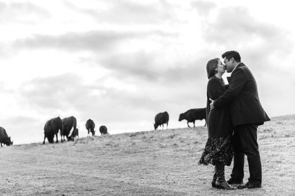 Pre wedding Photos in Hitchin
