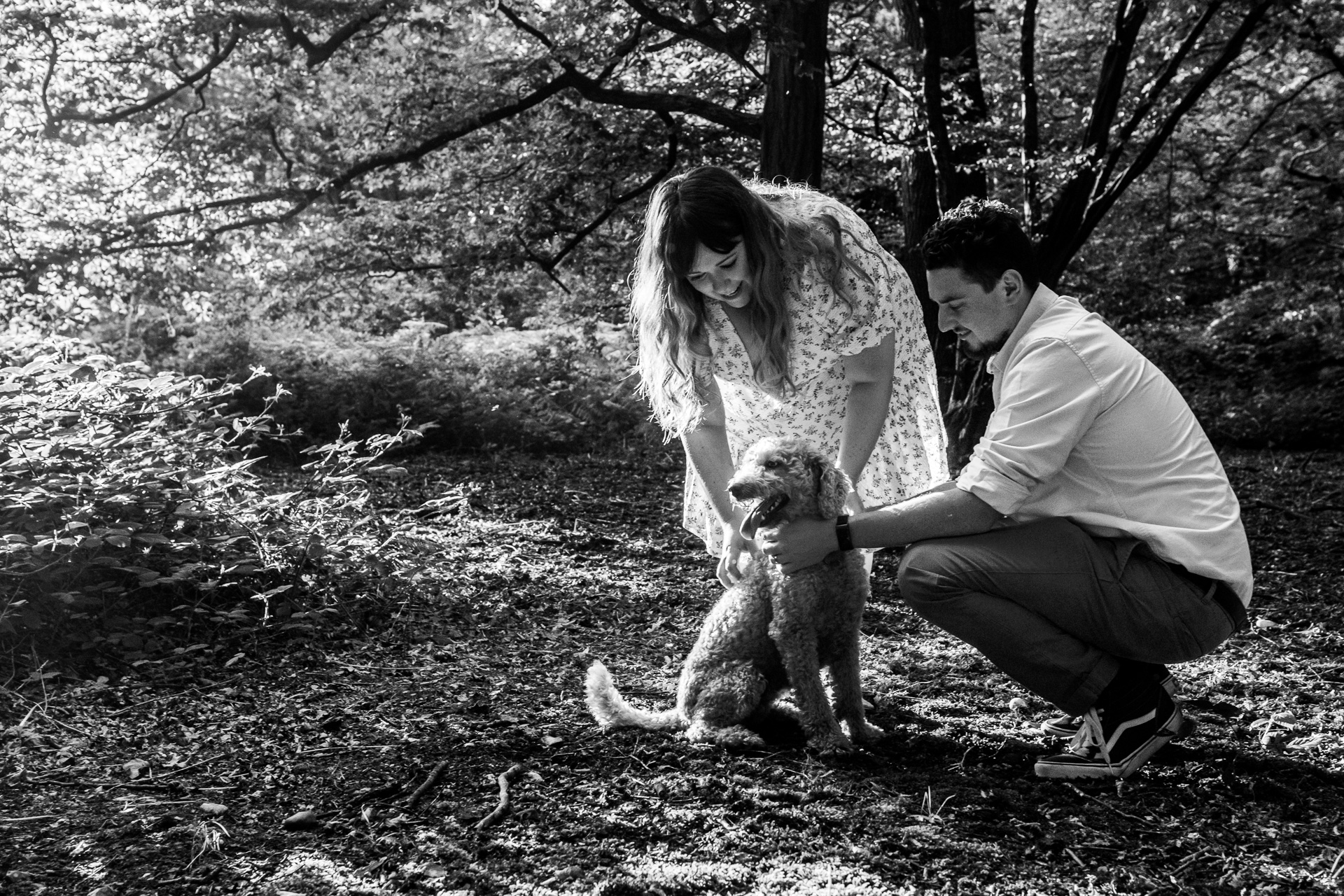 Wain woods in Hitchin, pre wedding photoshoot - A couple play with their dog