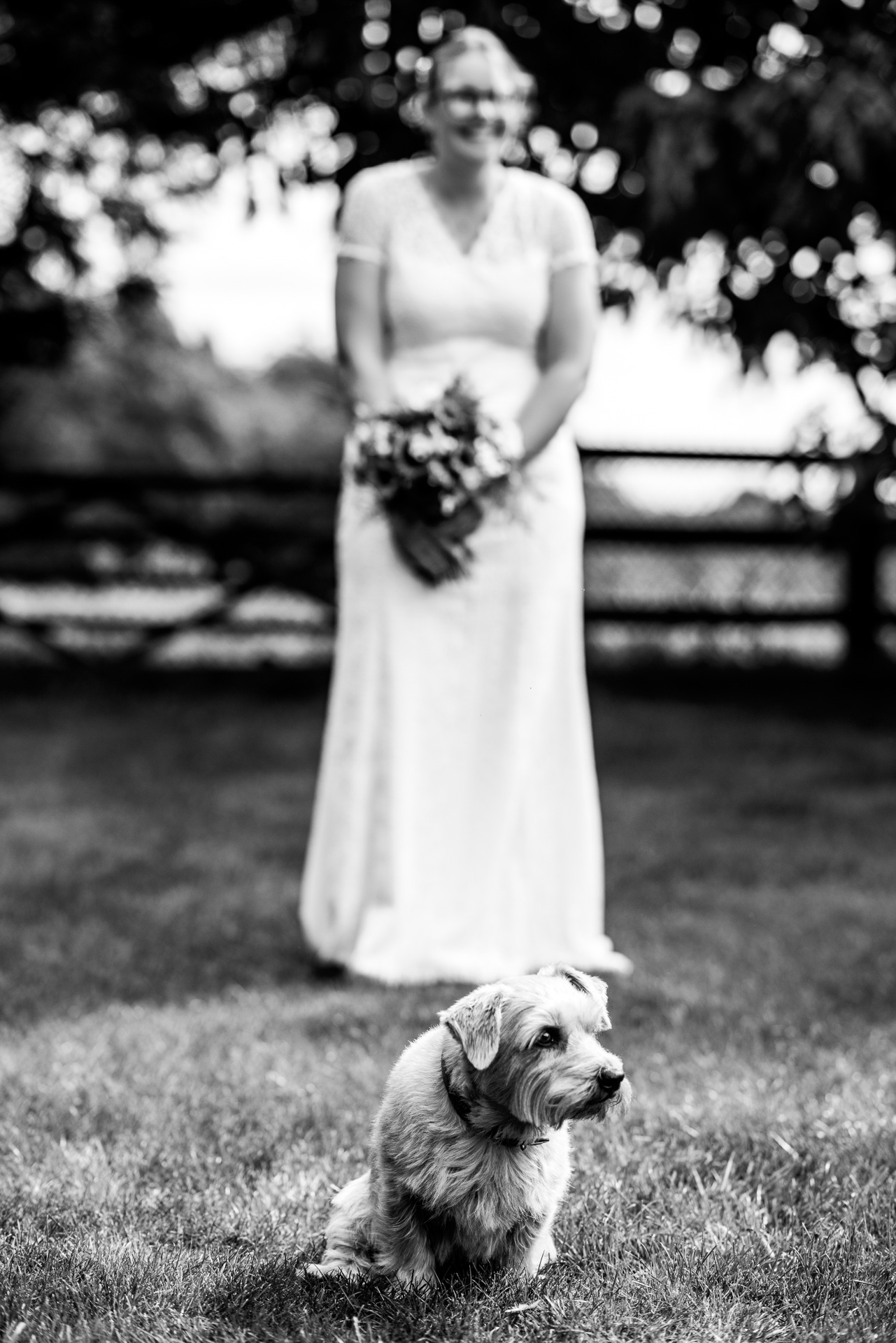 Bride with the family dog